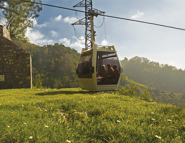 Botanical Cable Car